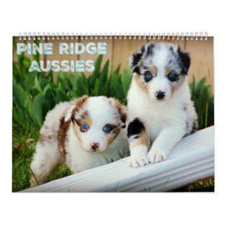 Australian Shepherd Puppies Calendars