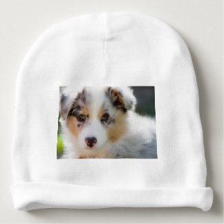 Australian shepherd puppy baby beanie