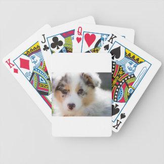 Australian shepherd puppy bicycle playing cards