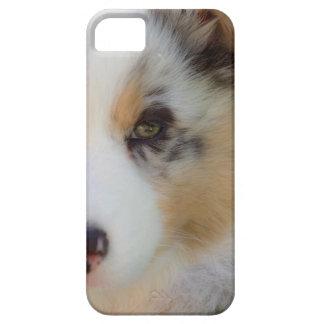 Australian shepherd puppy case for the iPhone 5