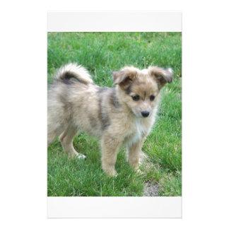 Australian Shepherd Puppy Custom Stationery