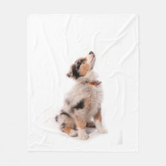 Australian shepherd puppy fleece blanket