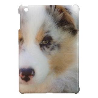 Australian shepherd puppy iPad mini cases