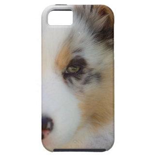 Australian shepherd puppy iPhone 5 case