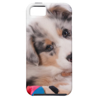 Australian shepherd puppy iPhone 5 cover