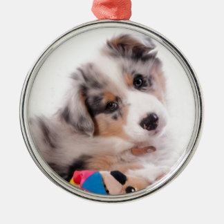 Australian shepherd puppy metal ornament