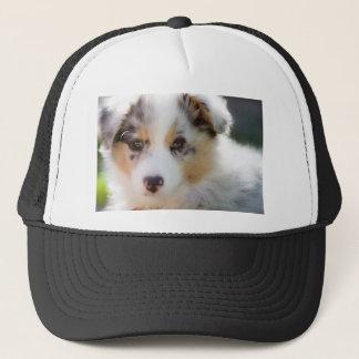 Australian shepherd puppy trucker hat