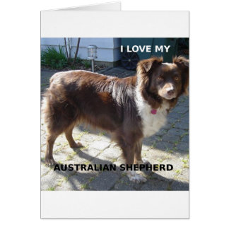 australian shepherd red tri love w pic card