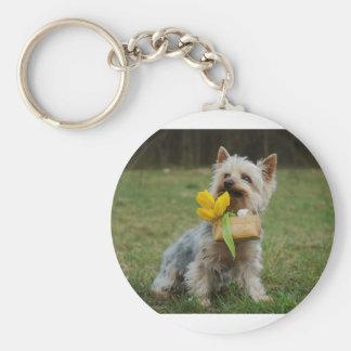 Australian Silky Terrier Dog Basic Round Button Keychain