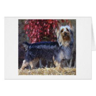 Australian Silky Terrier Dog Blank Greeting Card