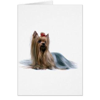 Australian Silky Terrier Dog Show Dog Card