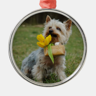 Australian Silky Terrier Dog Silver-Colored Round Ornament