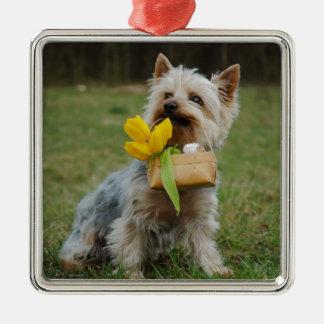 Australian Silky Terrier Dog Silver-Colored Square Ornament