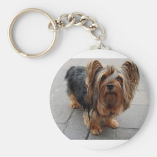 Australian Silky Terrier Puppy Dog Basic Round Button Keychain