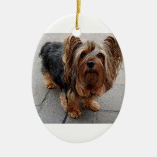 Australian Silky Terrier Puppy Dog Ceramic Oval Ornament