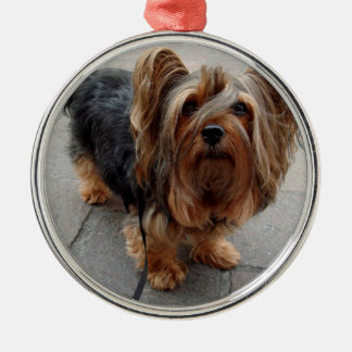 Australian Silky Terrier Puppy Dog Silver-Colored Round Ornament