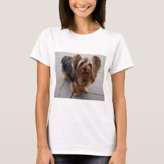 Australian Silky Terrier Puppy Dog T-Shirt