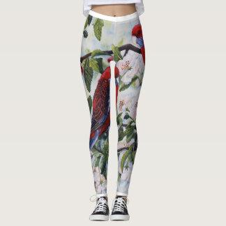 Australian Spring - leggings