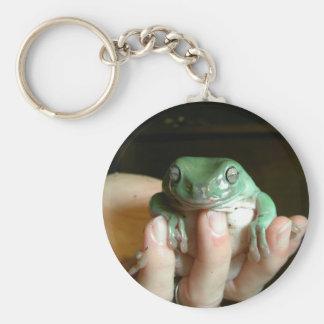 Australian Tree Frog Keychain