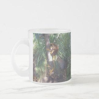 Australian Tree Kangaroo, Frosted Glass Mug. Frosted Glass Coffee Mug