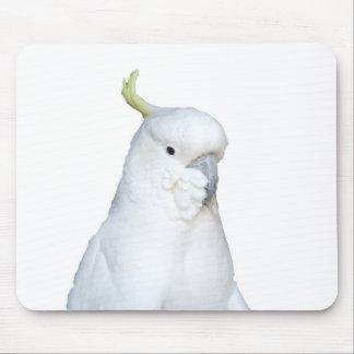 Australian White Cockatoo Mousepad