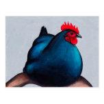 Australorp Chicken Hen Postcard