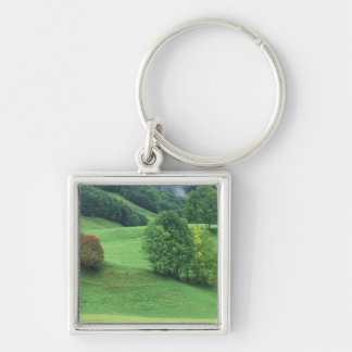 Austria. Rolling green hillside and trees Silver-Colored Square Keychain