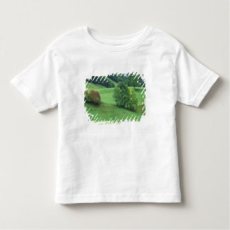 Austria. Rolling green hillside and trees T Shirts