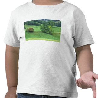 Austria. Rolling green hillside and trees T Shirt