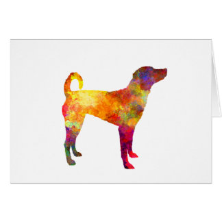 Austrian Pinscher in watercolor Card