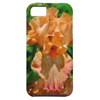 Author of Hope iPhone 5 Cases