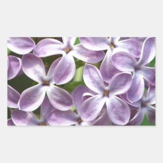 autocollant avec la photo de beaux lilas pourpres