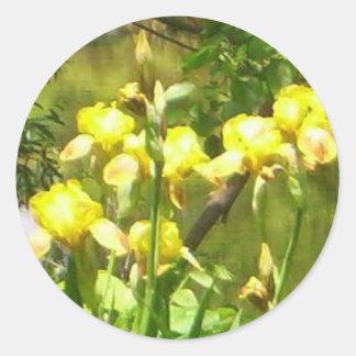 Autocollant de l'iris jaune 1