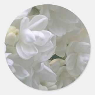 Autocollant lilas blanc