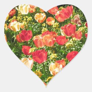 Autocollant rouge et jaune de coeur de tulipes
