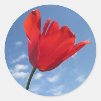 Autocollants - ciel bleu de tulipe rouge