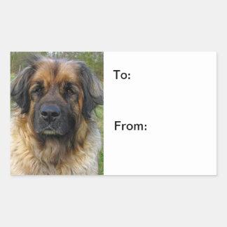 Autocollants de chien de photo de chien de Leonber