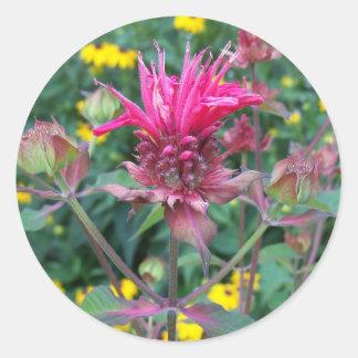 Autocollants de fleur de Beebalm