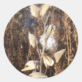 Autocollants de Milkweed