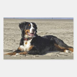 Autocollants de rectangle de photo de chien de mon
