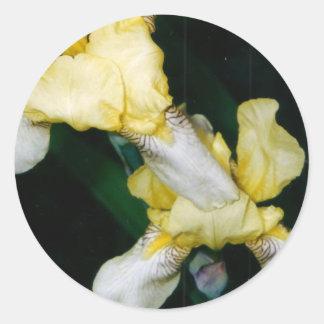 Autocollants d'iris jaune
