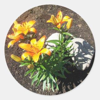 Autocollants oranges de lis