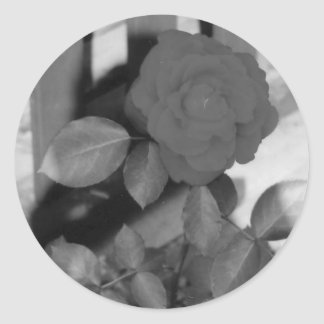 Autocollants roses
