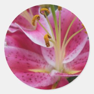 Autocollants roses abstraits de lis
