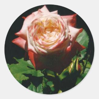 Autocollants roses de fraise