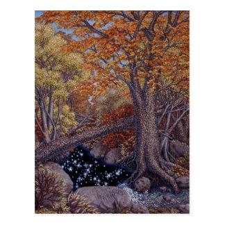Autum Spring Postcard