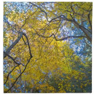 Autumn 7 printed napkins