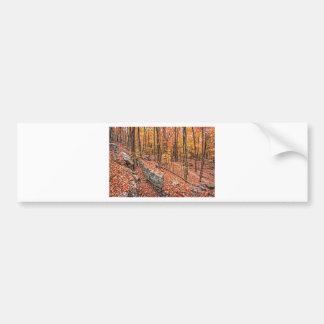 Autumn Above the Trail Bumper Sticker