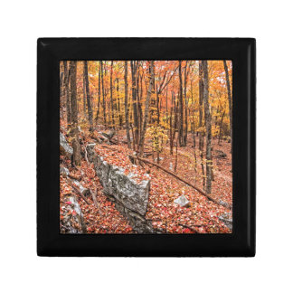 Autumn Above the Trail Gift Box