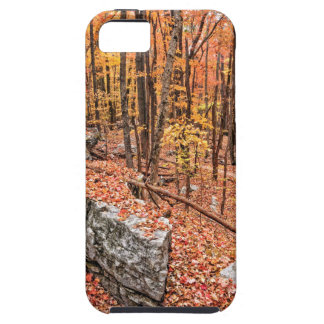 Autumn Above the Trail iPhone 5 Cover